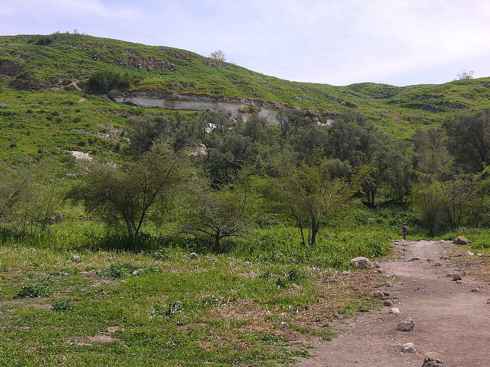 Tel-Zafit (1)