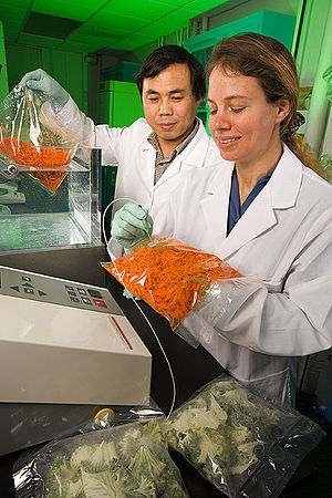 Food packaging - Testing modified atmosphere in a plastic bag of carrots