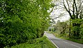 The Castleward Road, Strangford - geograph.org.uk - 1869839.jpg