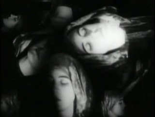 <i>The Fall of the House of Usher</i> (1928 American film) 1928 film by James Sibley Watson