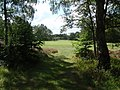 The Hodgkin Golf Course - geograph.org.uk - 937881.jpg