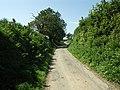 The Lane leaving Trefrawl - geograph.org.uk - 533993.jpg