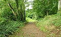 The Lecale Way near Strangford (3) - geograph.org.uk - 928786.jpg