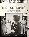 The Love Flower (1920) - 5.jpg