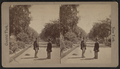 The Mall, from Robert N. Dennis collection of stereoscopic views 3.png