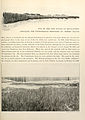 The Photographic History of The Civil War Volume 07 Page 171.jpg
