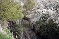 The River Ock in Abingdon - geograph.org.uk - 1239119.jpg