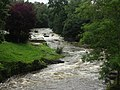 The River Rhiw - geograph.org.uk - 504272.jpg