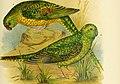 The birds of Australia (1890) (20196261990).jpg