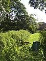 The edge of the jungle, Chellow Dean, Allerton, Bradford - geograph.org.uk - 490027.jpg