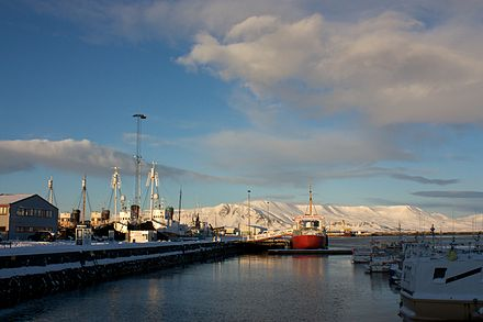 To the left, the black-hulled whaling ships. To the right, the red-hulled whale-watching ship. Iceland, 2011. To the left, the black-hulled whaling ships. To the right, the red-hulled whale-watching ship.jpg