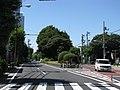 Tokyo Route 455 -02.jpg