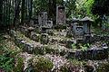 Tono Kizugawa Kyoto pref Japan30n.jpg