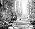 Track crew members and water pump, Copalis Lumber Company, ca 1917 (KINSEY 70).jpeg