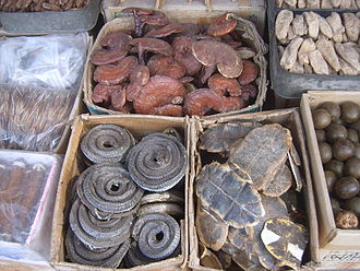 "History of medicine - Assorted dried plant and animal parts used in traditional Chinese medicines, clockwise from top left corner: dried Lingzhi (lit. ""spirit mushrooms""), ginseng, Luo Han Guo, turtle shell underbelly (plastron), and dried curled snakes"