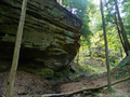 Trail 1, Shades State Park.png