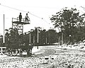 Tramways Tower Wagon mounted on horse drawn wagon - New South Head Rd, Double Bay (6687630947).jpg