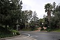 Trousdale-Trousdale Pl and Loma Vista Dr looking South-West 2015.jpg