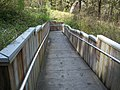 Troy Springs SP path02.jpg