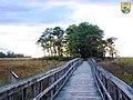Tubby Cove Boardwalk - Region 5 (8813264594).jpg