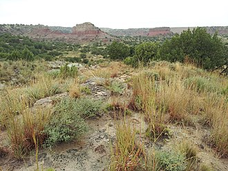 Battle of Palo Duro Canyon - Tule Canyon as seen from Highway 207 north of Silverton, Texas