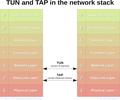 Tun-tap-osilayers-diagram.png