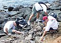US Navy 030602-N-5539C-018 Members of the COMSUBPAC First Class Petty Officer Association participated in a park clean up at Magic Island Honolulu.jpg