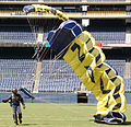 US Navy 070308-N-4163T-328 Two members of the U.S. Navy Parachute Demonstration Team Leap Frogs land in San Diego's Qualcomm Stadium as part of a training session.jpg