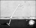 UUM-44 SUBROC firing diagram 1964.png