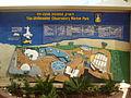Underwater Observatory Marine Park in Eilat.JPG