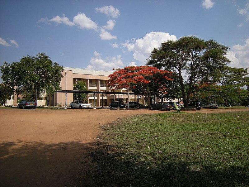 Universidade do Malawi (3031927748).jpg