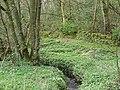 Upper Dean Park - geograph.org.uk - 410870.jpg