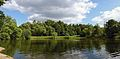 Uzkoe Pond - panoramio.jpg