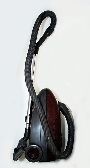 Canister vacuum cleaner for home use.