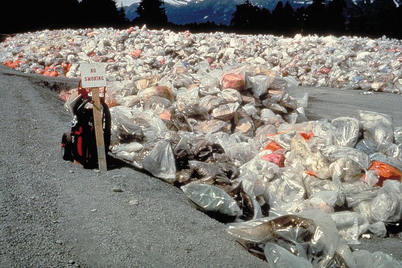 Valdez Trash Pile.jpg