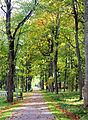 Vana-Põltsamaa mõisa park.JPG