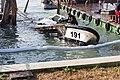 Venedig ACTV VE7727 191 Acqua alta-5361.jpg