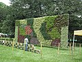 Vertical Garden from Lalbagh flower show Aug 2013 8796.JPG