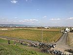 View of Saga City near Balloon Saga Station 2.jpg