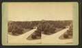 View of a park(?) with trees, roads, a bridge, and a building in the background, by C. H. Muhrman.png