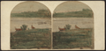 View on Catskill or Kauterskill (Kaaterskill) Lake, N.Y, by New York Stereoscopic Co..png