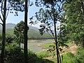 Views around Munnar, Kerala (71).jpg