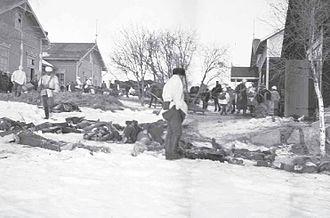 Battle of Länkipohja - Executed Reds in Vilkkilä.