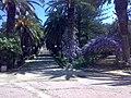 Villa Comunale Ribera 1.jpg