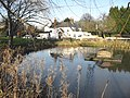 Village pond and pub in Coldred - geograph.org.uk - 634015.jpg