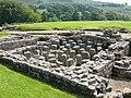 Vindolanda Roman fort - geograph.org.uk - 918772.jpg