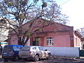Vinnytsia Artema Str 21 photo1.jpg