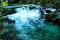 Vintgar Gorge (35772795946).jpg