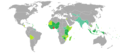 Visa requirements for Ghanaian citizens.png