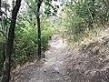 Visegrád - Fellegvar - panoramio (1).jpg